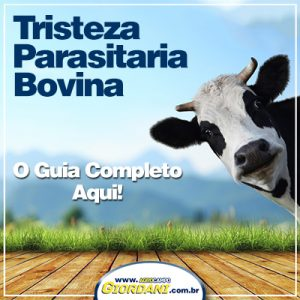 tristeza parasitaria bovina