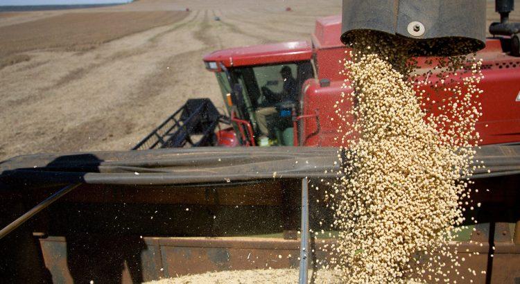 A hora da colheita: safra de grãos tem melhor perspectiva em 17/18